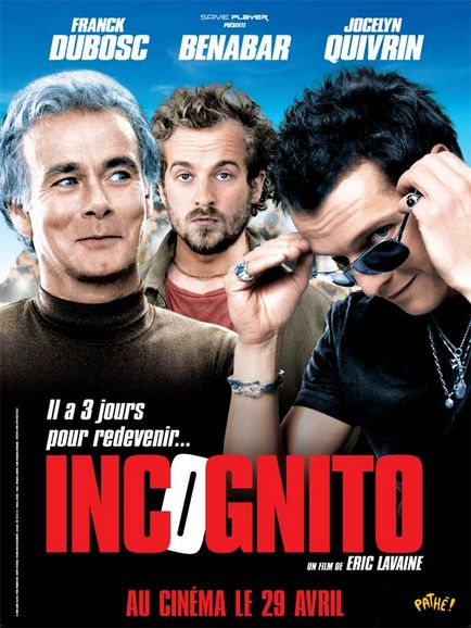 [Multi3]Incognito |FRENCH| [DVDRiP]