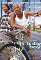 Affiche miniature du film Baby Boy