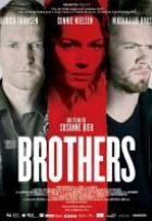 Affiche miniature du film Brothers
