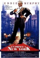 Affiche miniature du film Un Prince à New York