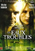 Affiche miniature du film En eaux troubles