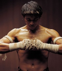 Fast and Furious 7 : Tony Jaa rejoint le casting